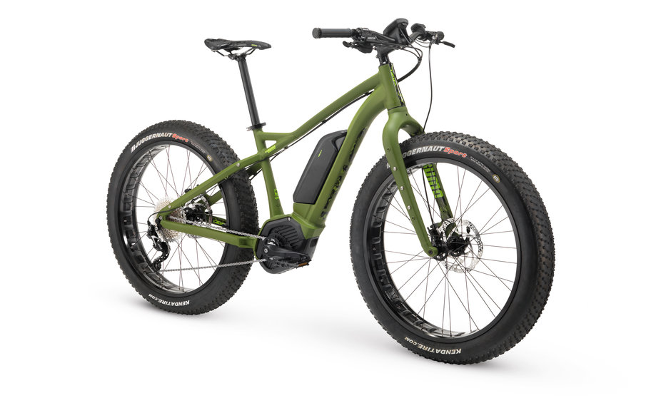 Electric Bike 17 IZIP E3 Sumo Angle