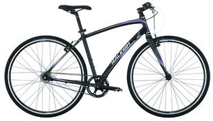 Raleigh Bicycles - Alysa i8