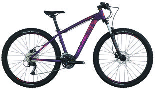 Raleigh Bicycles - Eva 5.5