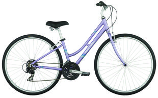Raleigh Bicycles - Detour 3.5 Women's