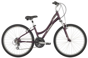 Raleigh Bicycles - Venture 3.0 Women's