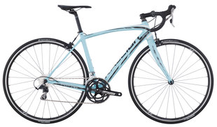 Raleigh Bicycles - carbon 1