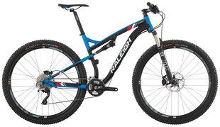 Raleigh Bicycles - skarn expert