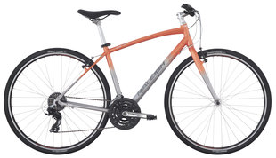 Raleigh Bicycles - alysa 2