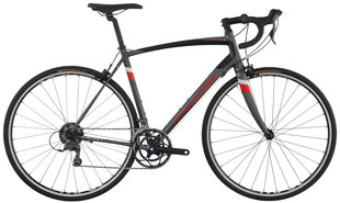 Raleigh Bicycles - Merit 1