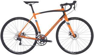 Raleigh Bicycles - Merit 2