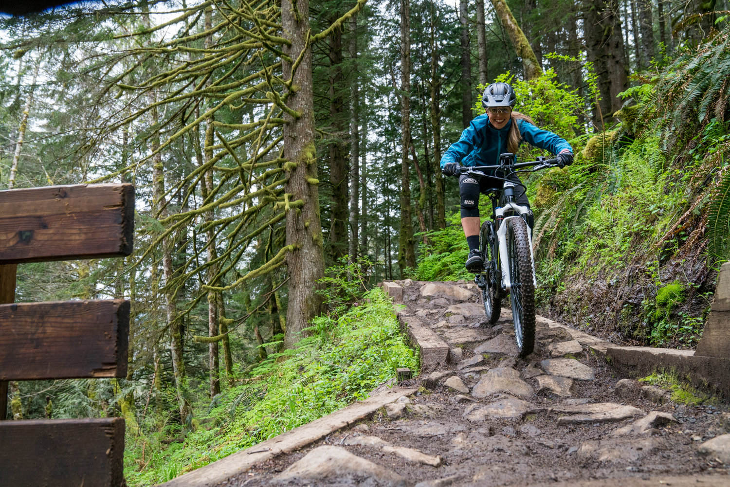 All About Electric Bikes