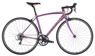 Raleigh Bicycles - capri aluminum 1